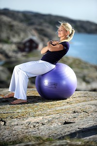 Image Securemax® Exercise Ball - 65 cm (blue-purple)